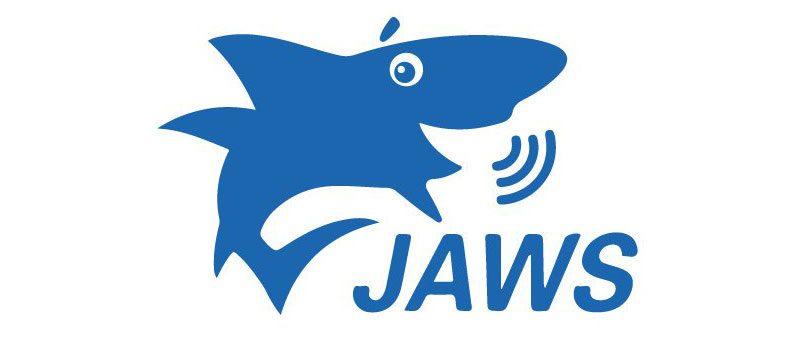 Logiciel de revue d'écran pour aveugle JAWS For Windows