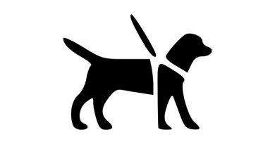 Logo chien-guide d'aveugle