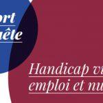"""Fondation AVH : Rapport de l'enquête """" Handicap visuel, emploi et numérique"""""""